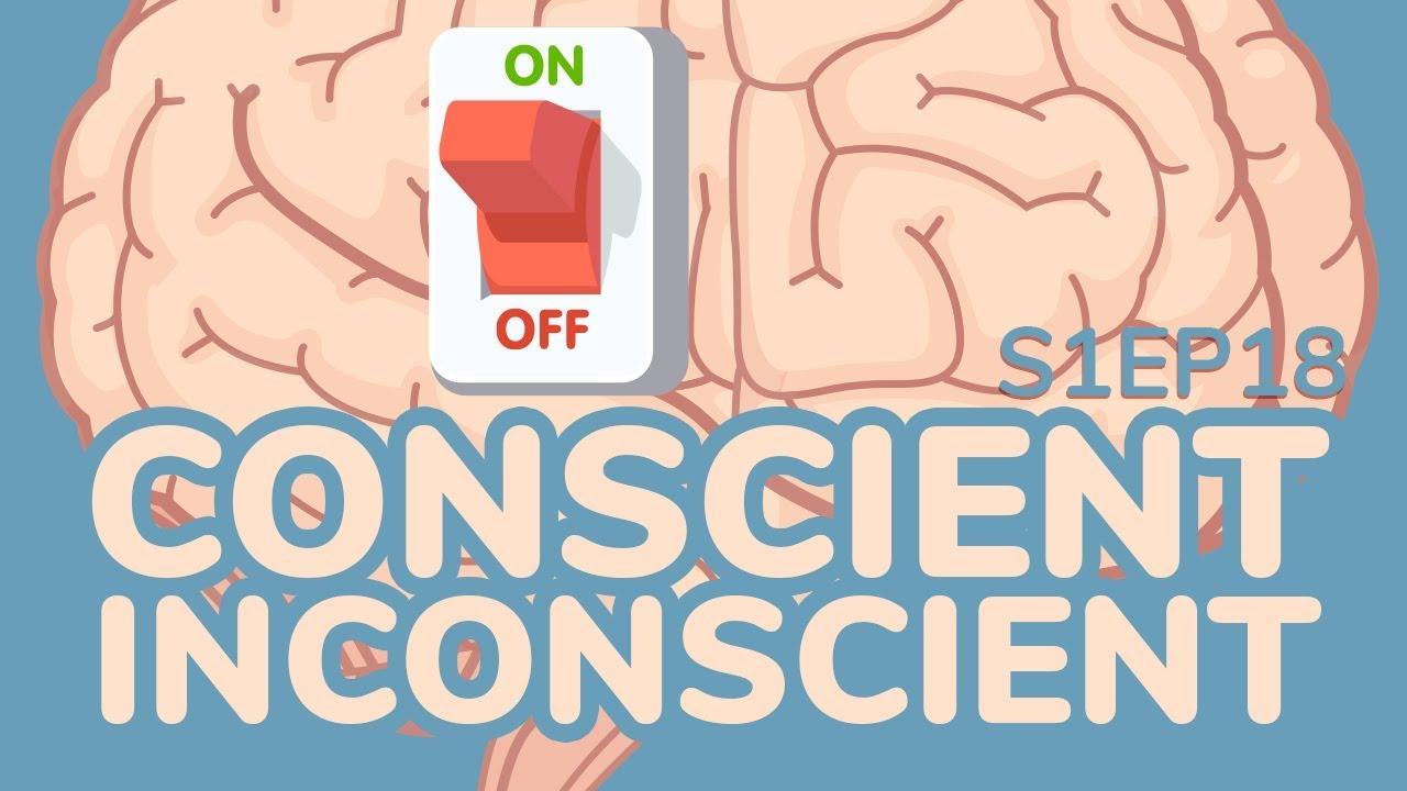 Qu'est-ce que le conscient et l'inconscient ?